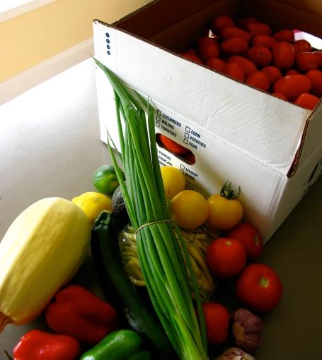 farmer's market haul