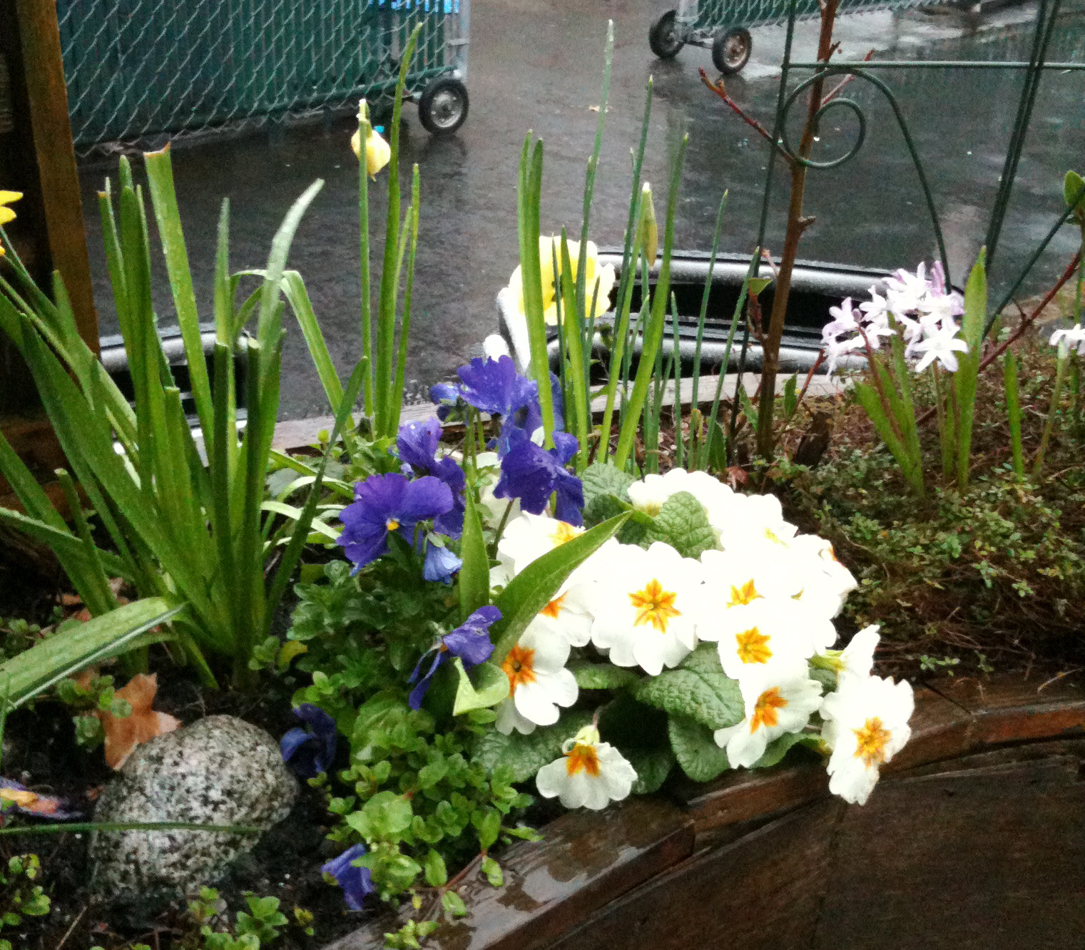 Small space gardens nest and sparkle for Tiny garden spaces