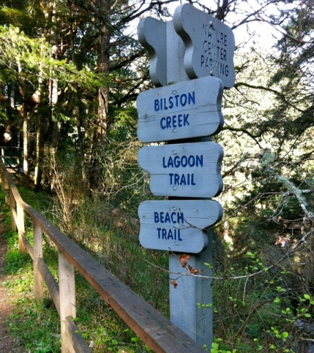 signs at wittys lagoon