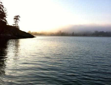 sooke fog
