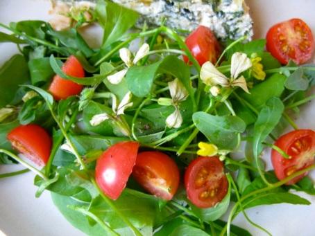 2013 garden salad